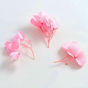 P_Flowertwist01_300-300.jpg
