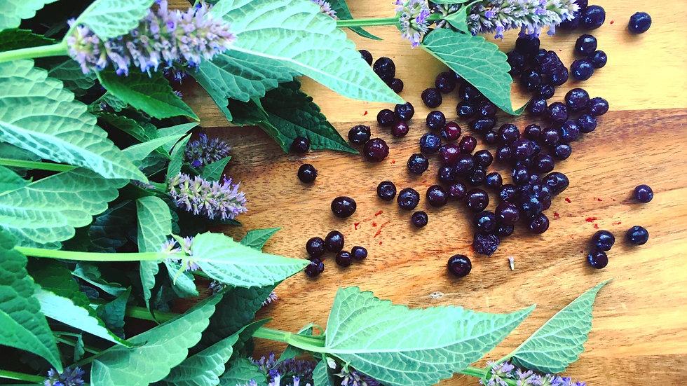 Wild blueberry anise