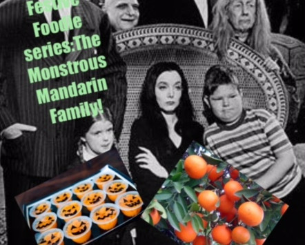 FESTIVE FOODIE SERIES: THE MONSTROUS MANDARIN FAMILY!