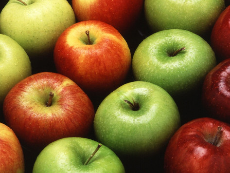 THE LAND OF THE APPLES!
