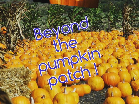 PRODUCE EXTRAVAGANZA: BEYOND THE PUMPKIN PATCH!