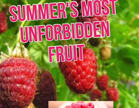 GARDEN OF EDEN: SUMMER'S MOST UNFORBIDDEN FRUIT