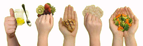 hand-portion-measurement.png