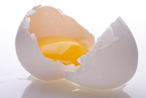 THE  HARD BOILED TRUTH BETWEEN  EGGS VS  EGG WHITES!