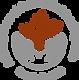 ACT logo (1).png