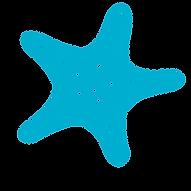 Starfish Big blueFull color   Copy.png