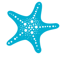 Starfish Big blueFull color   Copy.png