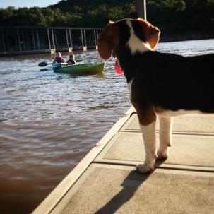 Kayaking at the community docks