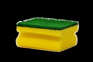 sponge-3081410_1920_edited_edited.png