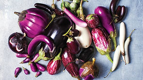 eggplant varieties.jpg