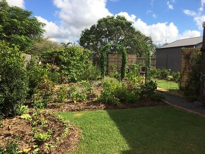 Elizabeth's garden 1 year later.png