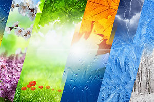 Beautiful nature collage - four seasons