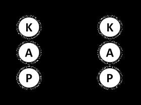 KAP-1.png