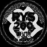 RYS200 Black 2.png