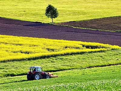 Tarım ve Gıda Üretimi