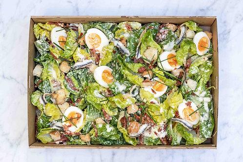 Caesar Salad Box | up to 10pp