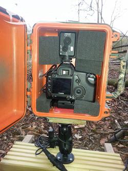 Camera and flash trigger
