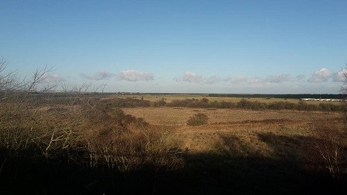 View to the sea from Betteshanger Country Park