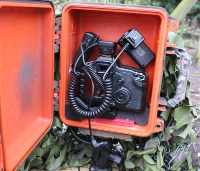 DSLR Camera traps