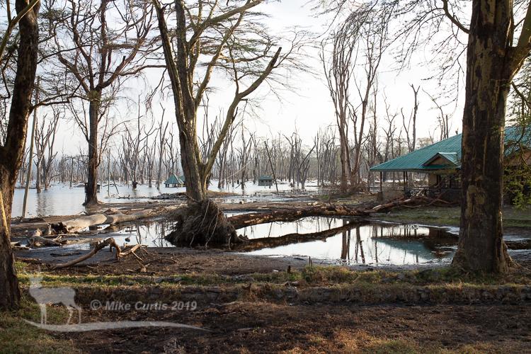 Flooded park entrance