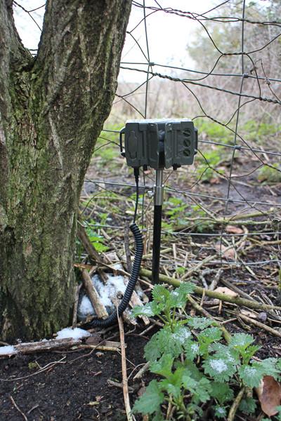 Camtraption PIR v.2 (wireless configuration)