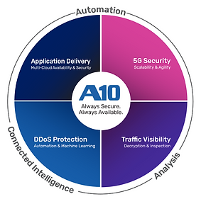 A10 Networks - overview.png