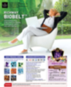 BioBelt - Amethyst BioMat International