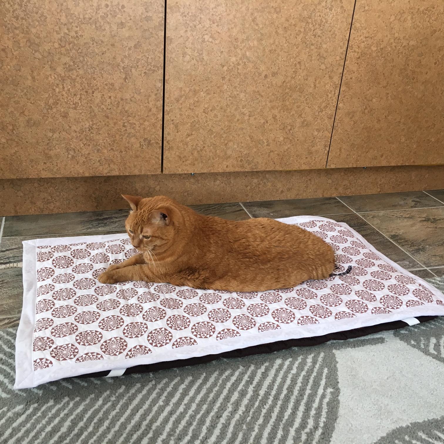 BioMatcat