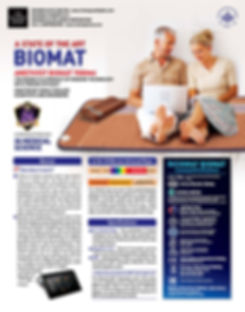 The BioMat - Amethyst BioMat International