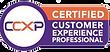 CCXP Logo Transparent.png