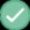 Program Optimization Icon.png
