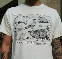 Wildlife of Philadelphia