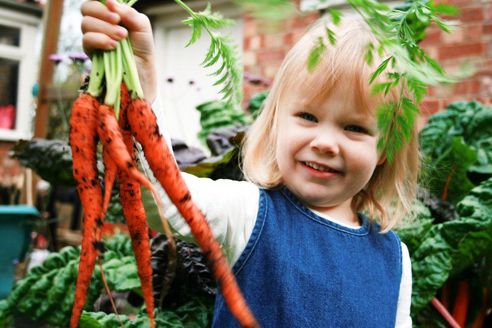 garden design for fruit and veg Tythorne Garden Design