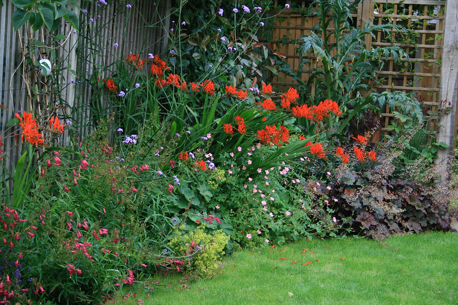 stamford garden designer