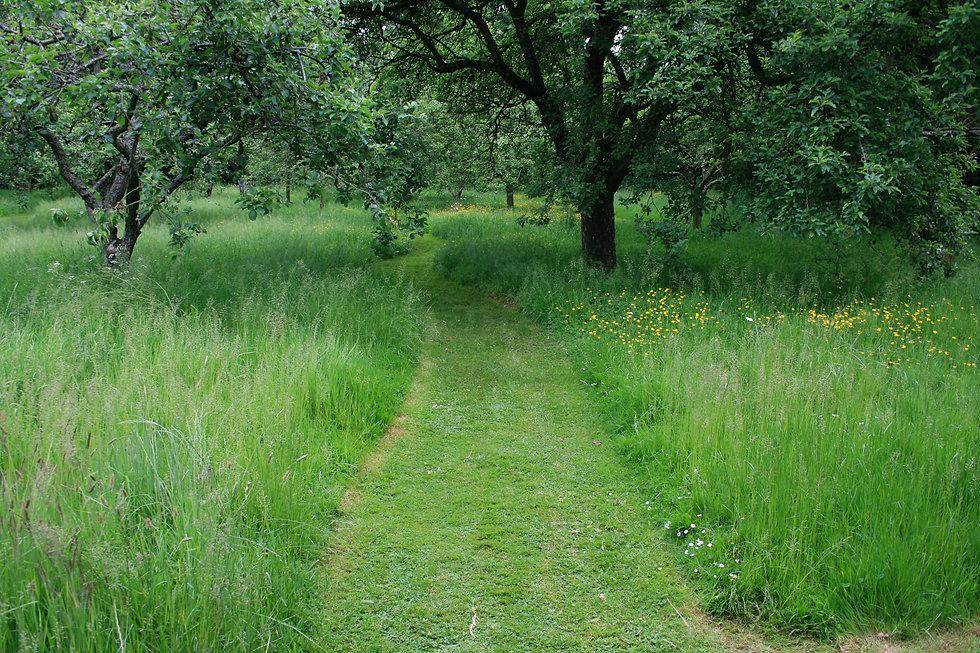 Garden design for larger gardens Tythorne Garden Design