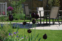 nottinghamshire garden desig.jpeg