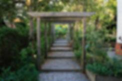 garden designer nottingam Tythorne Garden Design