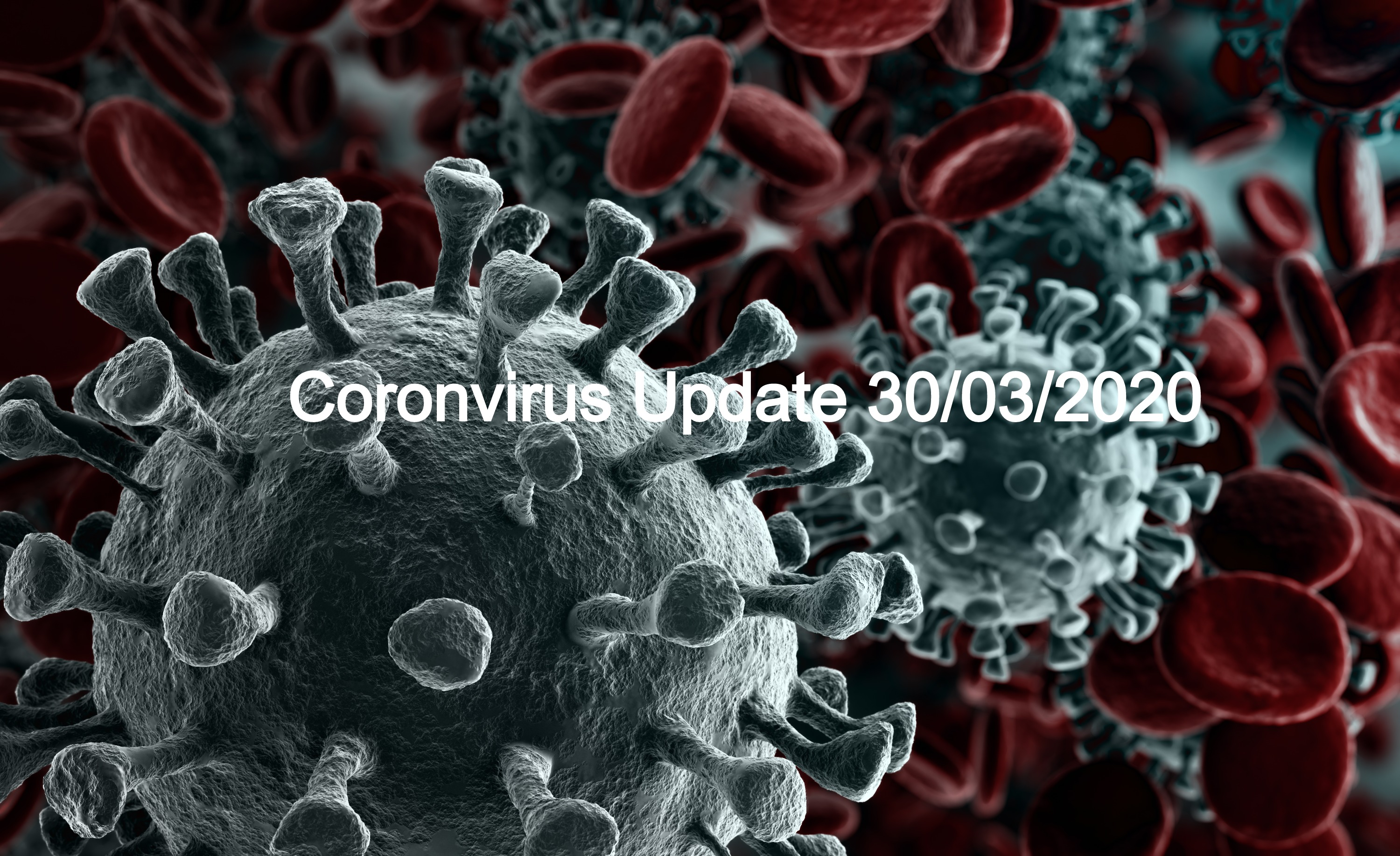 Copy%20of%20Coronavirus%202019-nCov%20no