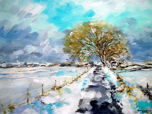 Snow thaw near Girthon