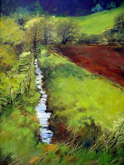 Spring Meadows near Donanfuil