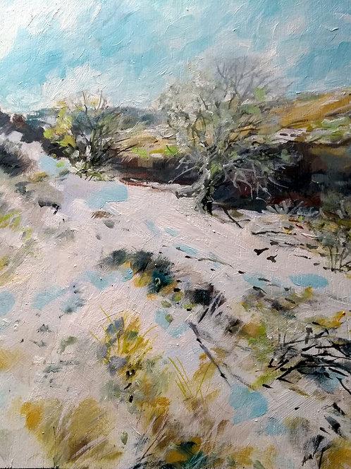 Snow on the Mynydd