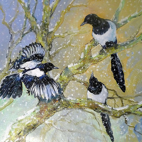 Magpies in Snow