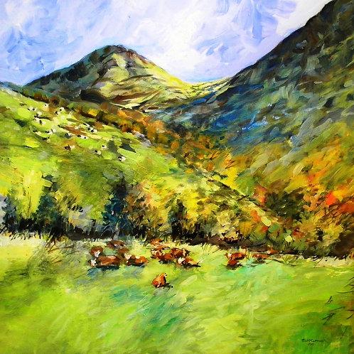 Cattle Glenlyon
