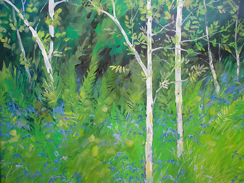 The Bluebell Wood                 Oil painting