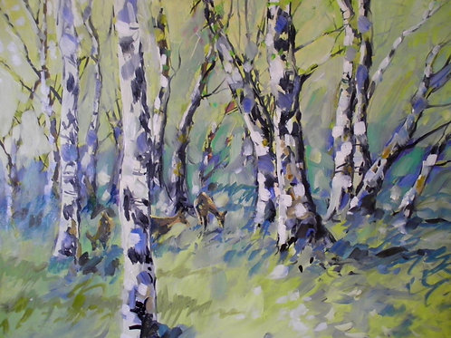 Spring birch with roe