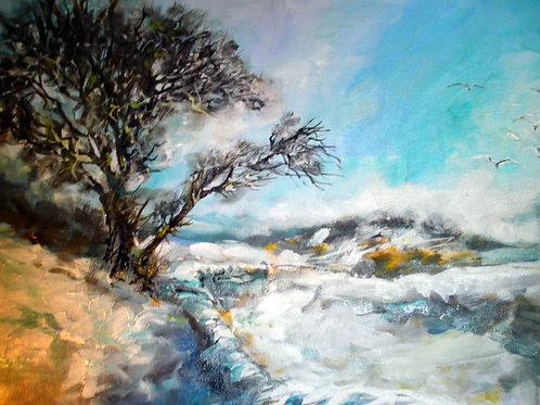 Frost Rainton Fields