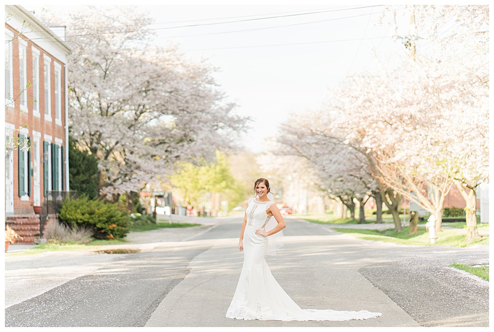 virginia wedding photographer, cherry blossoms, bridal photography, austin and austin photography