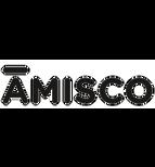 amisco logo.png