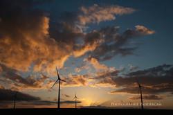 Sunset à Liberchies