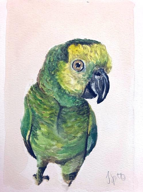 8x10 Custom Watercolor Pet Portrait